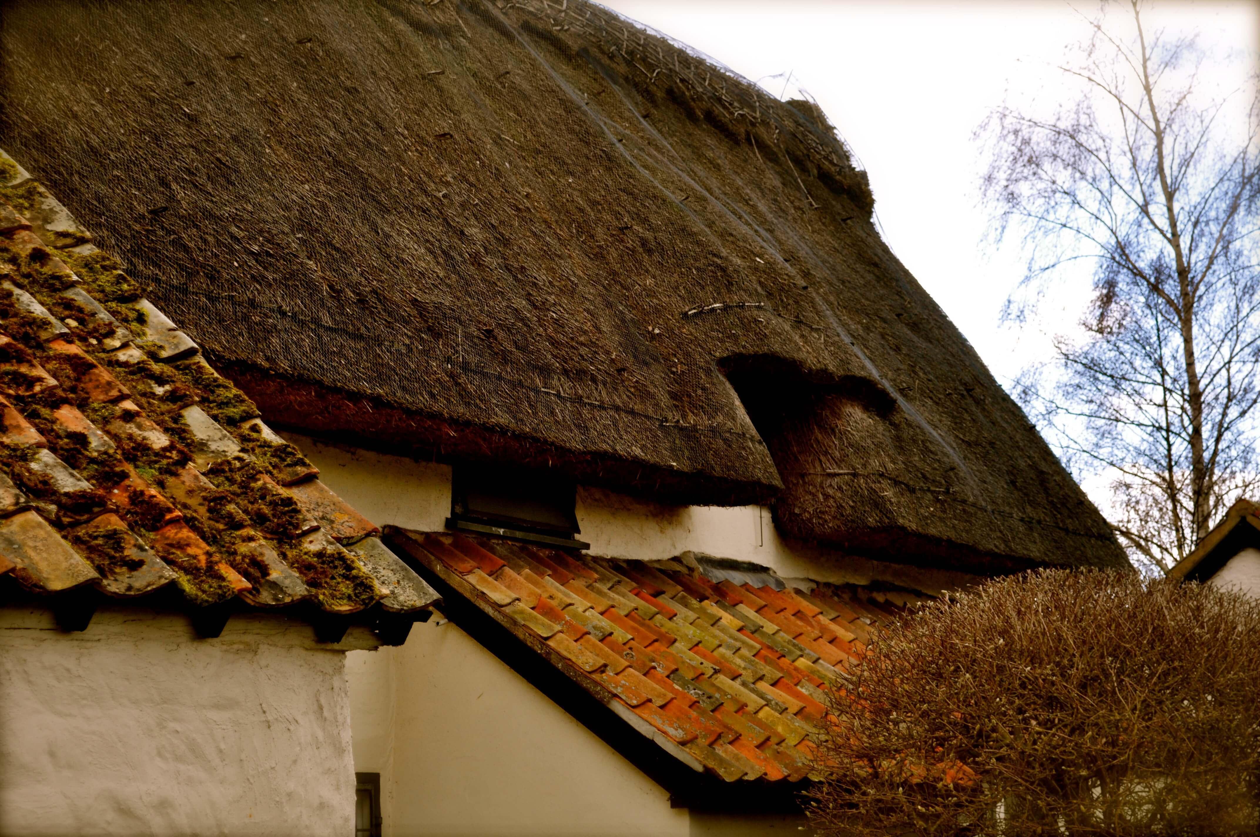 ASHWELL_village_GarytrotmanPhotoZ_00144