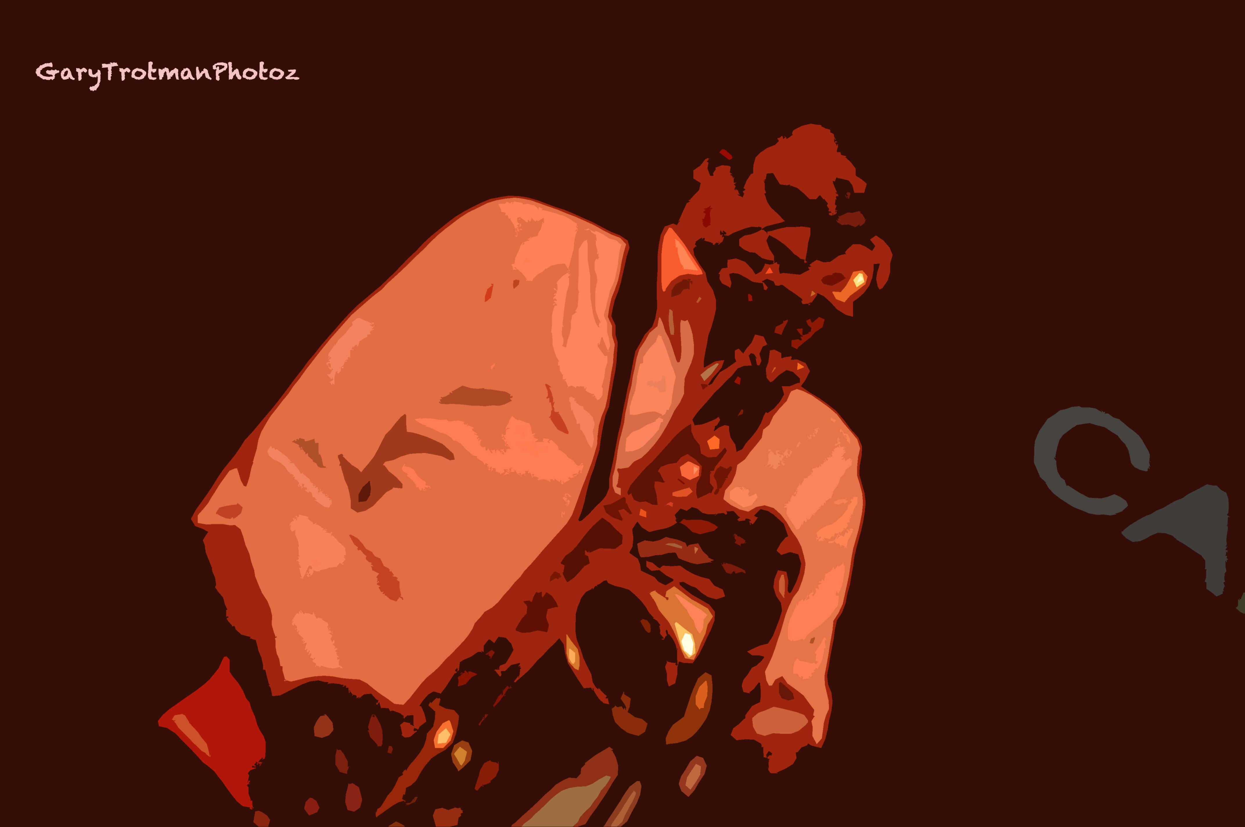 Ray Carless sax